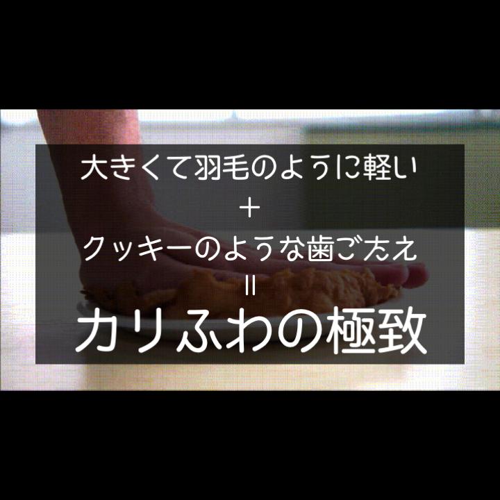 kagetsudo06